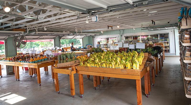 Fiorentino's Farm Market Vegetable Market in Atlantic County NJ