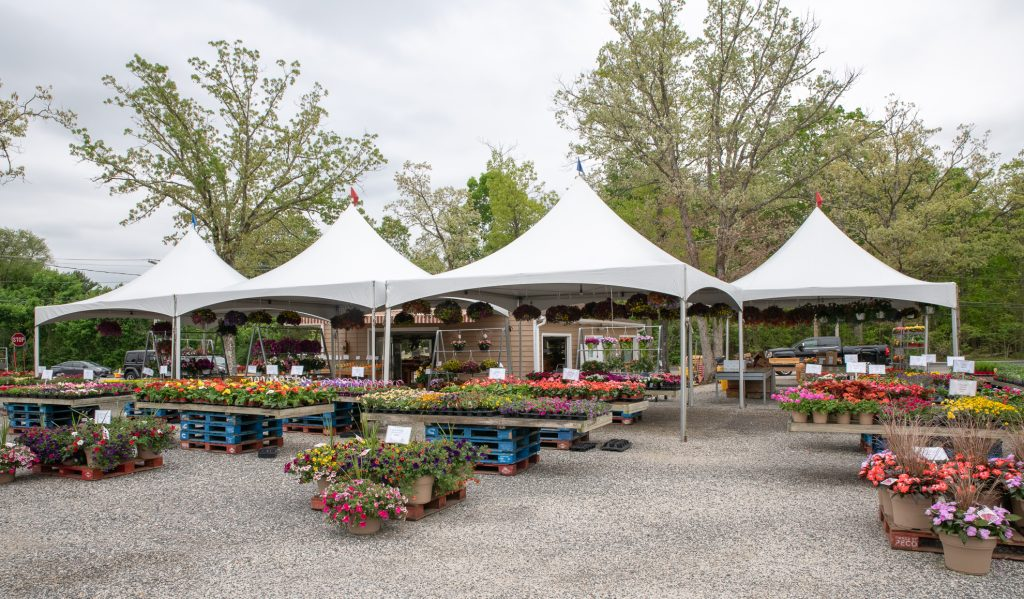 Fiorentino's Farm Market Plants and Flower Market Hammonton NJ
