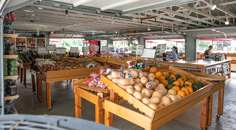 Fiorentino's Farm Market Hammonton NJ Market Specials