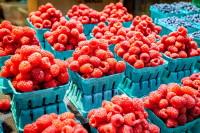 Fiorentino's Farm Market Shopping Farmers Market Benefits
