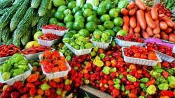 Fiorentino's Farm Market Hammonton NJ Farmers Market Benefits Shopping