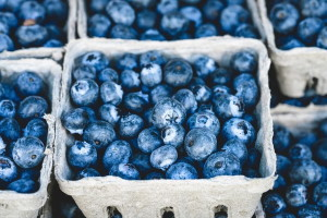 Fiorentino's Farm Market Fresh Blueberry Recipes Summertime