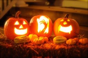 Fiorentino's Farm Market How to Recycle Halloween & Fall Pumpkins